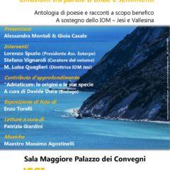 Poesie e racconti sul Mar Adriatico: un'antologia a scopo benefico