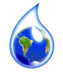 """Ecologia e Ambiente. Lettera aperta al Pres. Fico…""""Puliamo il mondo"""""""
