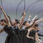 """Torino Danza Festival. Al Teatro Regio, di scena """"Noetic"""" e """"Icon"""". Coreografie di S. Larbi Cherkaoui"""