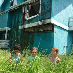 'Un sogno chiamato Florida': quando la realtà si trasfigura