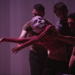 In chiusura il Festival MilanOltre propone tre opere di Virgilio Sieni dal 4 al 6 ottobre