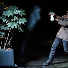 Teatro di Rifredi | Il Generale di Emanuele Aldrovandi | 22 e 23 novembre
