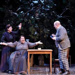 La commedia di Natale al Teatro Niccolini di Firenze | 'L'acqua cheta', a cura della Compagnia delle Seggiole, 26 dicembre – 4 gennaio