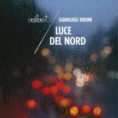 'Luce del Nord' di Gianluigi Bruni ovvero Sopravvivere in Italia