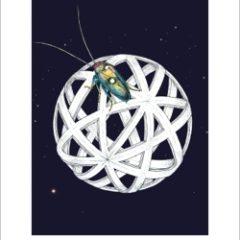 Da blatta a primo ministro. In libreria il nuovo romanzo satirico di Ian McEwan 'Lo scarafaggio', ed. Einaudi