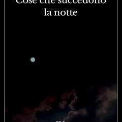 Un romanzo di buio e di neve. 'Cose che succedono la notte' di Peter Cameron, Adelphi Edizioni