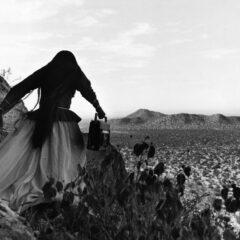 MUTA IMAGO presenta SONORA DESERT con musiche originali di Alvin Curran _ dall'8 al 20 giugno al Teatro India di Roma